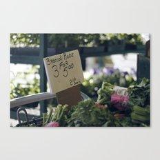 brocoli Canvas Print