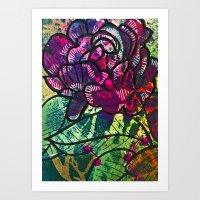 Cabbage Rose 2 Art Print