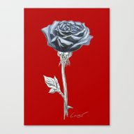 Canvas Print featuring Rose 03r Botanical Flowe… by Antony Corso