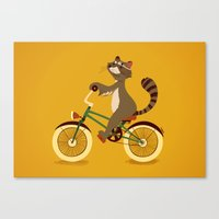 Raccoon on a bicycle Canvas Print