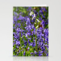 Rare White Bluebell Stationery Cards