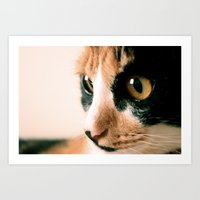 Thinking Cat Art Print