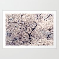 cherry blossom Art Prints featuring Cherry Blossom * by Neon Wildlife