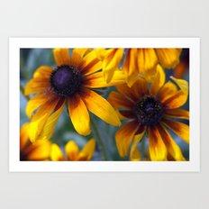 Summer's things - rudbeckia 20 Art Print