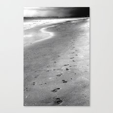 Like Sands Through The Hourglass Canvas Print