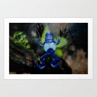 Poison Dart Frog Belly- … Art Print