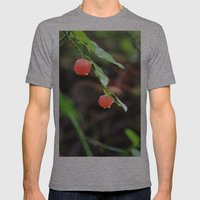 Temptation Mens Fitted Tee Athletic Grey SMALL