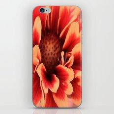 Fairy tales iPhone & iPod Skin