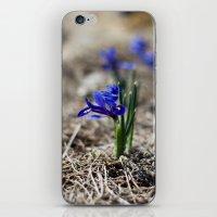 Mini Iris iPhone & iPod Skin