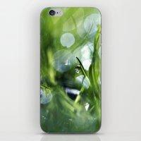 Morning Magic iPhone & iPod Skin