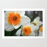 Spring Lovelies Art Print