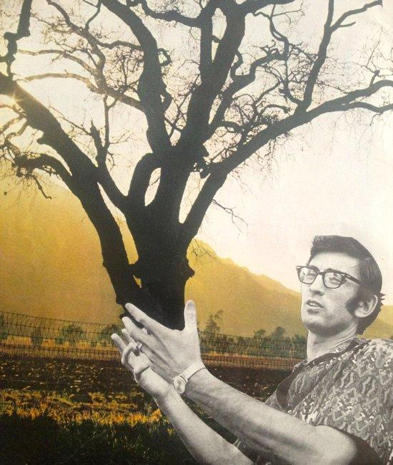 Tree Hands Art Print