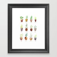 Culinary Herbs Framed Art Print