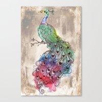 Grunge Peacock Canvas Print