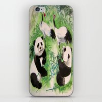 Bamboo Orchestra iPhone & iPod Skin