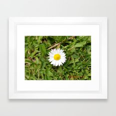 Spot Flower Framed Art Print