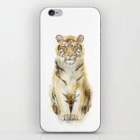 Tiger // Sound iPhone & iPod Skin