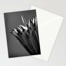 Tulip Tree Fruit Stationery Cards