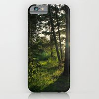 Entering Narnia iPhone 6 Slim Case