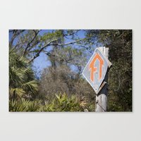 Florida Trail in Winter (unrecognizable weather in Florida) Canvas Print