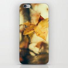 Louisiana Fall iPhone & iPod Skin
