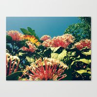 Badfish Canvas Print