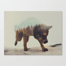 Akiak The Husky Canvas Print