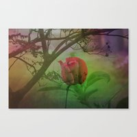 Dipped In Dew, Nestled B… Canvas Print