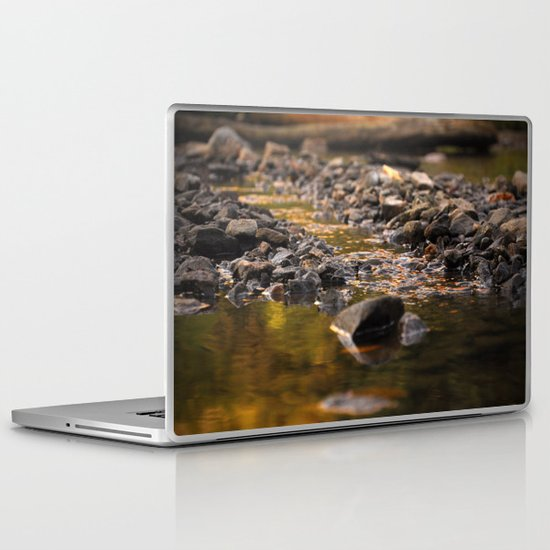 Little stream Laptop & iPad Skin