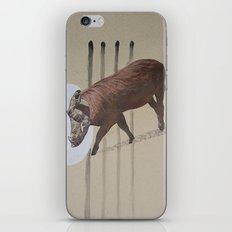 kraft5 iPhone & iPod Skin