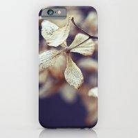 Nostalgic Nature iPhone 6 Slim Case
