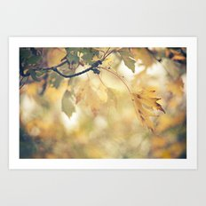 Autumn Yellows Art Print