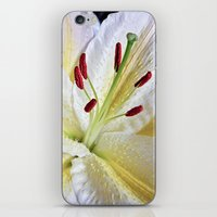 Lily Macro iPhone & iPod Skin