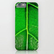 Green Leaf iPhone 6 Slim Case
