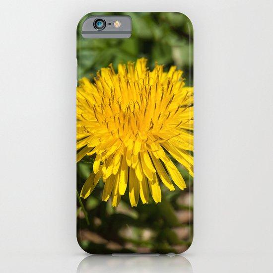 Taraxacum iPhone & iPod Case