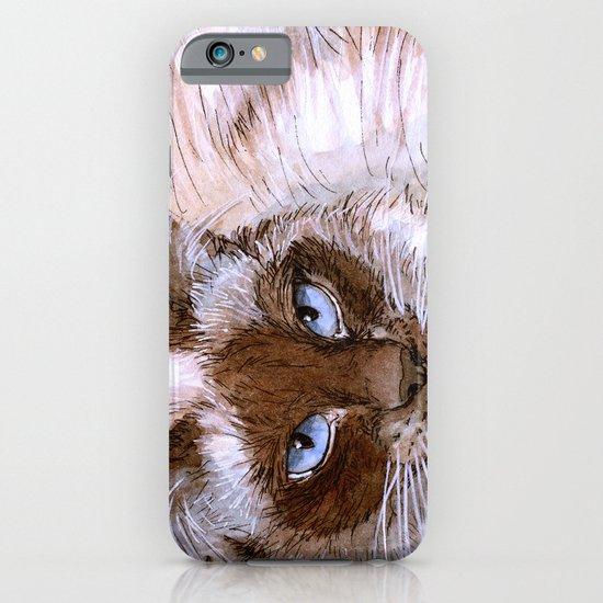 Birman Cat 561 iPhone & iPod Case