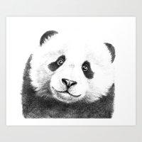 Giant  Panda G100 Art Print