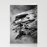 Love Of Driftwood Stationery Cards