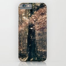 Tales from the trees 1 iPhone 6s Slim Case