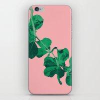 Branch Floripa iPhone & iPod Skin