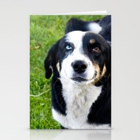 Smiling Dog Stationery Cards