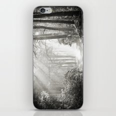 Into the Forest - Nr. 2 iPhone & iPod Skin