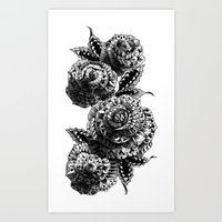 roses Art Prints featuring Four Roses by BIOWORKZ