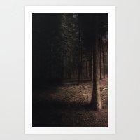 Pine Forest Art Print
