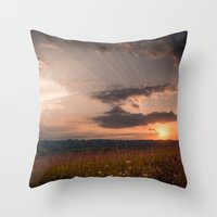 In the middle of the Summer Throw Pillow