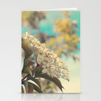 White flowers on blue sky (Retro flower photography) Stationery Cards