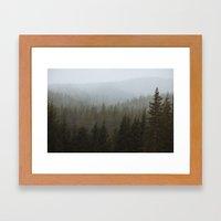 Snowy Forks Forest Framed Art Print