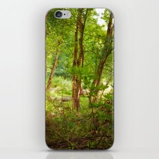 Surreal woodland iPhone & iPod Skin