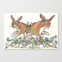 Lupus Trifectus  Canvas Print