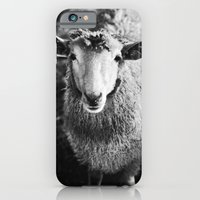 iPhone & iPod Case featuring Sheep by SilverSatellite